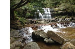 Liffy Falls
